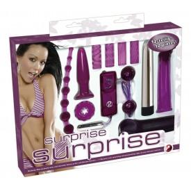 Фиолетовый эротический набор из 12 предметов Surprise Surprise Lovetoyset